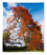 Bright Fall Colors Fleece Blanket