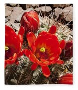 Bright Orange Cactus Blossoms Fleece Blanket