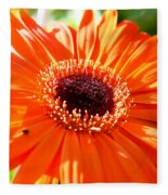 Bright Orange Gerbera  Fleece Blanket