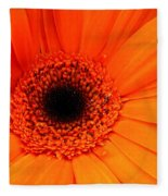 Bright Red Fleece Blanket