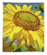 Bright Sunny Happy Yellow Sunflower 10 Sun Flowers Art Prints Baslee Troutman Fleece Blanket