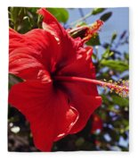 Brightly Colored Hibiscus On The Greek Island Of Mykonos  Fleece Blanket