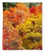 Brillant Fall Fleece Blanket