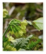 Brimstone On Cowslip Primrose Fleece Blanket