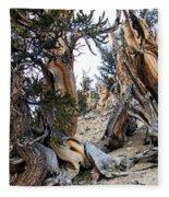 Bristlecone Forest, Ca November 2105 Fleece Blanket
