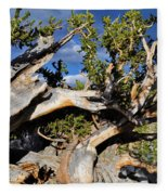 Bristlecone Great Basin Landscape Fleece Blanket