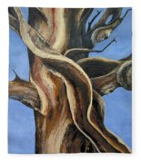 Bristlecone Tree No.4 Fleece Blanket