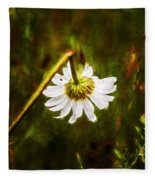 Broken Hearted Oxeye Daisy Asteraceae  Fleece Blanket