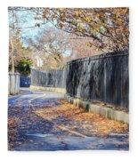 Brooklyn Park In Fall Fleece Blanket