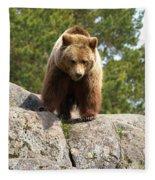 Brown Bear 3  Fleece Blanket