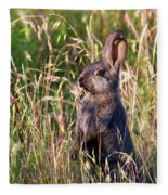 Brown Bunny Fleece Blanket