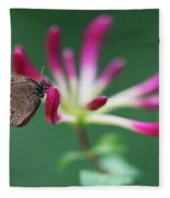 Brown Butterfly Resting On The Pink Plant Fleece Blanket