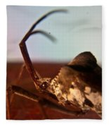 Brown-eyed Bug Fleece Blanket
