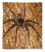 Brown Fishing Spider Fleece Blanket