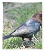 Brown-headed Cowbird 2 Fleece Blanket