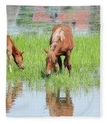 Brown Horse And Foal Nature Spring Scene Fleece Blanket