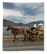 Brown Horse Drawn Carriage Fleece Blanket