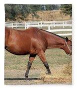 Brown Horse Eating Hay Ranch Scene Fleece Blanket