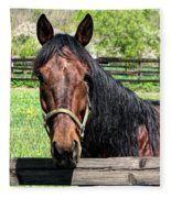 Brown Horse In A Corral Fleece Blanket