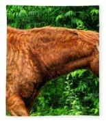 Brown Horse In High Definition Fleece Blanket