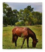 Brown Horse In Holland Fleece Blanket