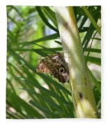 Brown Morpho Butterfly Resting On A Sunny Tree  Fleece Blanket