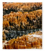 Bryce Canyon Series #3 Fleece Blanket