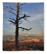 Bryce Canyon Dead Tree Sunset 3 Fleece Blanket