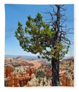 Bryce Canyon Fairyland Point Portrait Fleece Blanket