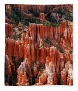 Bryce Canyon In Utah Fleece Blanket