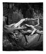 Bryce Canyon Tree Stump On A Ridge Fleece Blanket