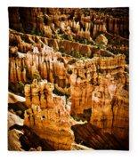 Bryce Canyon Vertical Image Fleece Blanket