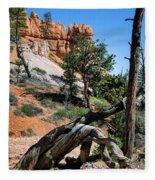 Spires On Navajo Trail Fleece Blanket