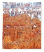Bryce National Park Fleece Blanket