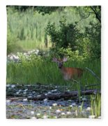Buck In Pond Fleece Blanket