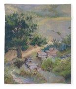 Buckhorn Canyon Fleece Blanket
