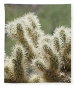 Buckhorn Cholla Fleece Blanket