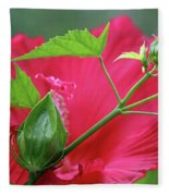Buds Before Blooms Fleece Blanket