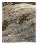 Buds Of Beauty Within Harshness Fleece Blanket