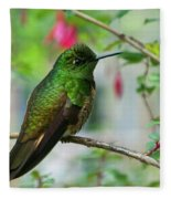 Buff-tailed Coronet Fleece Blanket