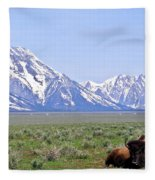 Buffalo At Rest Fleece Blanket