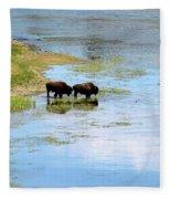 Buffalo Walk Fleece Blanket