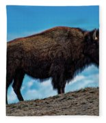 Buffalo In Profile Fleece Blanket