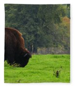 Buffalo In Spring Grass Fleece Blanket