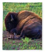 Buffalo In The Badlands Fleece Blanket