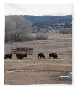 Buffalo New Mexico Fleece Blanket
