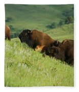 Buffalo On Hillside Fleece Blanket