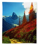 Bugaboos Evening Buzz Fleece Blanket