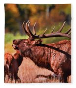 Bugling Elk In Autumn Fleece Blanket
