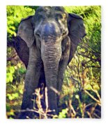 Bull Elephant Threat Fleece Blanket